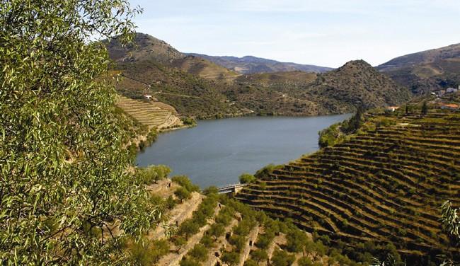 BLOG Gourmet News: Ταξίδι σε… όλη τη Γη με ένα ποτήρι κρασί  Μου αρέσει η εξαιρετική ιδέα του σεμιναρίου κρασιού που διοργανώνει η Wine Plus και αναλαμβάνει να κάνει το γύρο του αμπελοοινικού κόσμου σε… 3 ώρες.