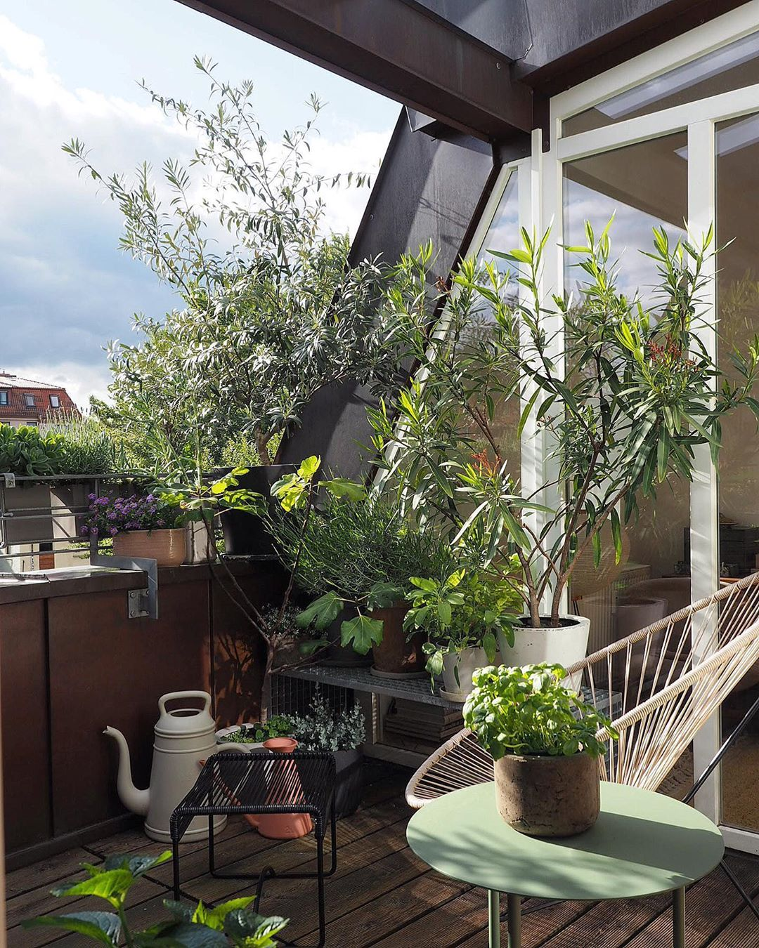 Πώς θα φτιάξω μια πράσινη όαση στη μικρή βεράντα μου; (25 ιδέες από €12,99)
