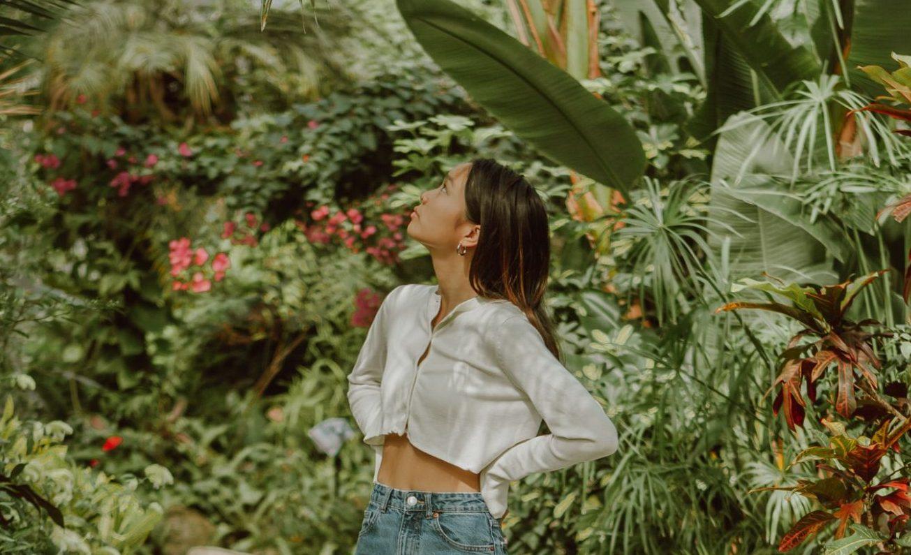 3 τροπικά φυτά για να χαρίσεις μια εξωτική αύρα στο σπίτι  Ανακαλύψαμε τα 3 αγαπημένα μας τροπικά φυτά που με τα χρώματά τους θα δώσουν vibes Αμαζονίου στο σπίτι σου και μια ευχάριστη νότα σε όσους περνούν το καλοκαίρι στην πόλη.