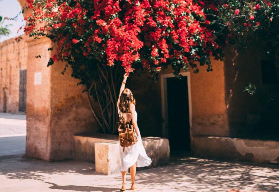 6 εντυπωσιακά, αναρριχώμενα φυτά που θα κάνουν το μπαλκόνι σου τον απόλυτο προορισμό του καλοκαιριού για την παρέα Το ελληνικό καλοκαίρι είναι αρρηκτα συνδεδεμένο με ανθισμένες βουκαμβίλιες και ειδυλλιακά καλοκαιρινά τοπία σε σοκάκια. Φέρε το καλοκαίρι στο σπίτι σου επιλέγοντας το αγαπημένο σου απο τα 6 αναρριχώμενα φυτά που θα κοσμίσει το μπαλκόνι ή την αυλή σου!